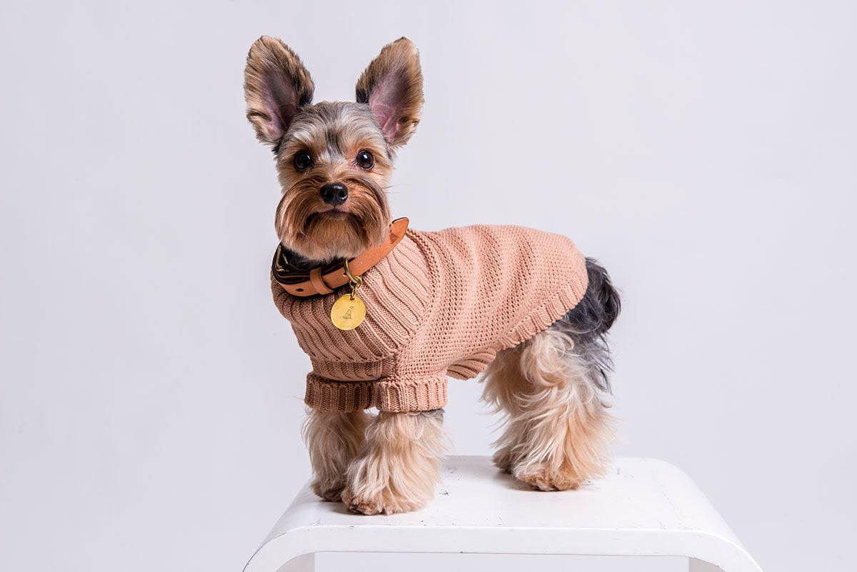Heamoor Knitted Pet Sweater