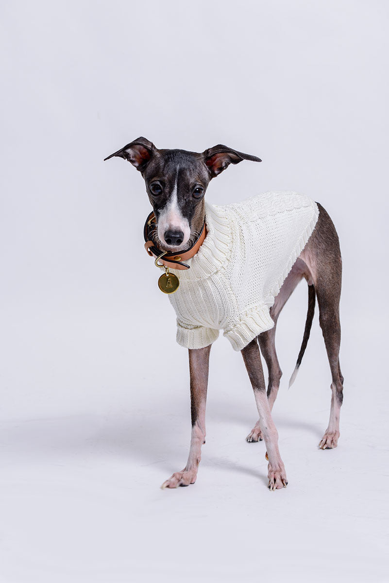 Victoria Cable Knit Sleeve Pet Sweater