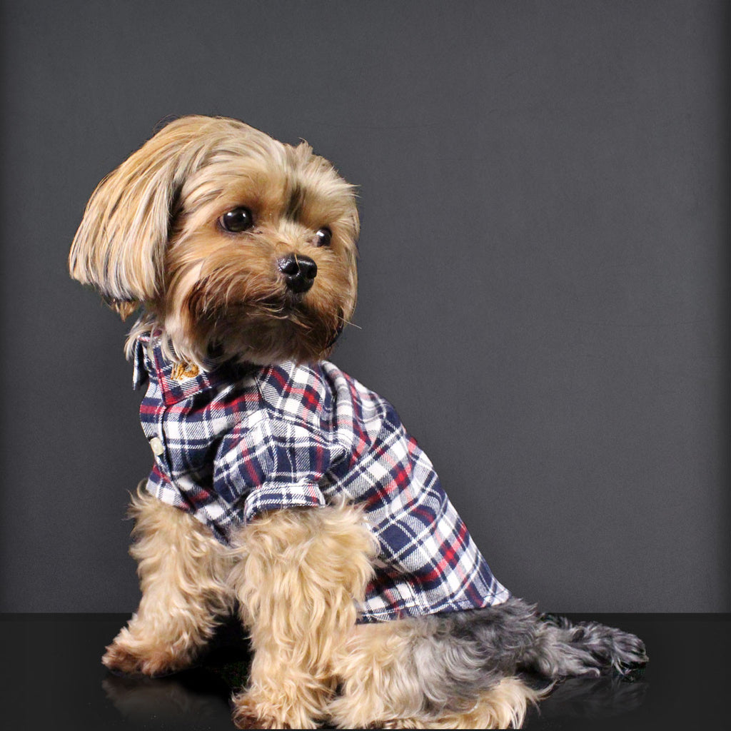 Richmond Classic Checkered Flannel Dog Shirt