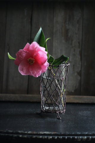 Wire & Glass Posy Vase