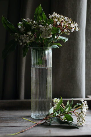 Ribbed Stem Vase