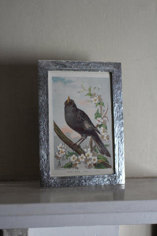 Pewter Thurlestone Photo Frame