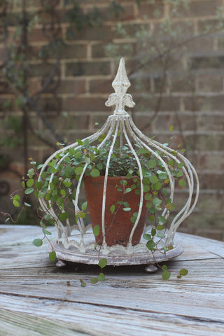 Decorative Crown Planter