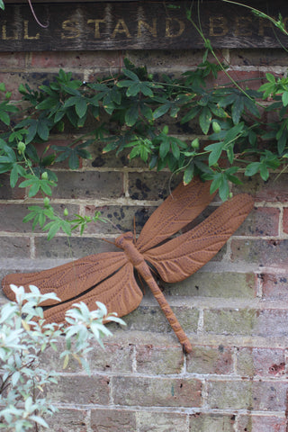 Dragonfly Wall Plaque