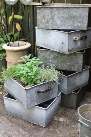 Vintage Galvanised Containers