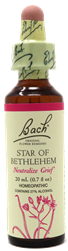 Star of Bethlehem Bach Remedy