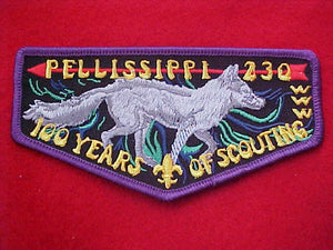 230 F1 PELLISSIPPI, 100 YEARS OF SCOUTING, PURPLE BORDER