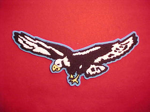 2008 S4S CONFERENCE CHENILLE JACKET PATCH, CAMP FLYING EAGLE