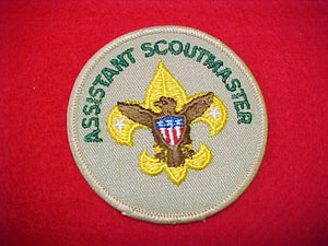 ASSISTANT SCOUTMASTER, 1989-PRESENT