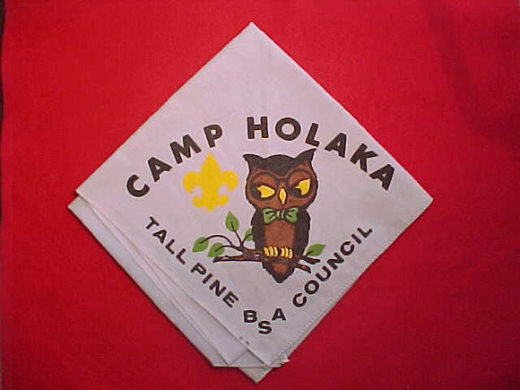 HOLAKA CAMP NECKERCHIEF, TALL PINE COUNCIL, LIGHT BLUE