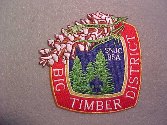 BIG TIMBER DISTRICT