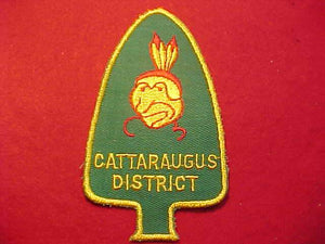 CATTARAUGUS DISTRICT
