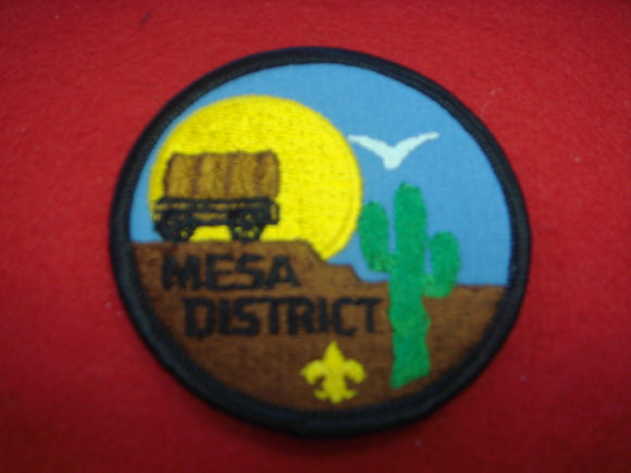 Mesa District