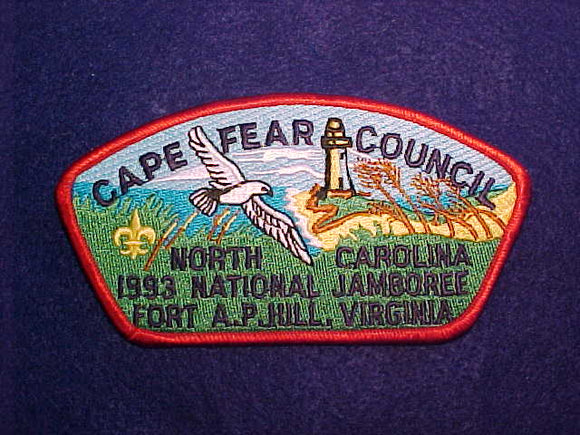 1993 CAPE FEAR COUNCIL