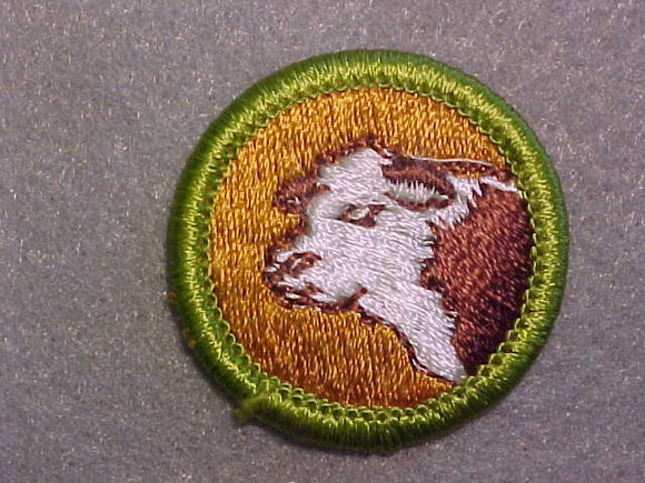 BEEF PRODUCTION, MERIT BADGE WITH CLEAR PLASTIC BACK, GREEN BORDER, NO IMPRINTS/LOGOS IN PLASTIC