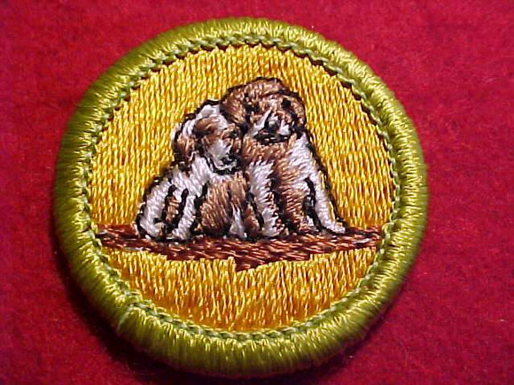 DOG CARE, MERIT BADGE WITH CLEAR PLASTIC BACK, GREEN BORDER, NO IMPRINTS/LOGOS IN PLASTIC, 1972-2002