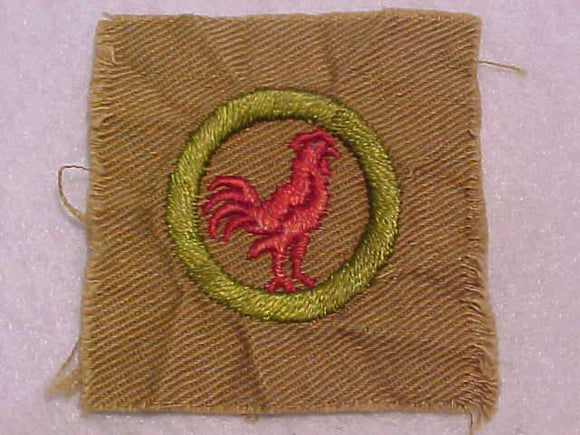 POULTRY KEEPING MERIT BADGE, SQUARE, 1920'S-1933, 53 X 55MM, USED
