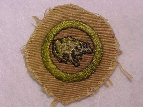 ZOOLOGY MERIT BADGE, SQUARE, 1930-1933, CUT DOWN 48MM