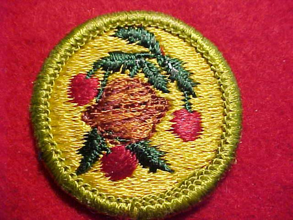 FRUIT AND NUT GROWING, MERIT BADGE WITH CLEAR PLASTIC BACK, GREEN BORDER, NO IMPRINTS/LOGOS IN PLASTIC, 1972-75