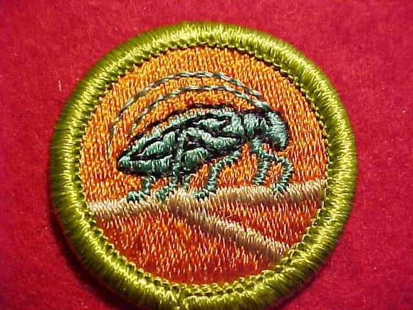 INSECT LIFE, MERIT BADGE WITH CLEAR PLASTIC BACK, GREEN BORDER, NO IMPRINTS/LOGOS IN PLASTIC, 1972-2002