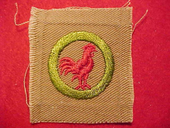 POULTRY KEEPING MERIT BADGE, SQUARE, 1920'S-1933, 50X57MM