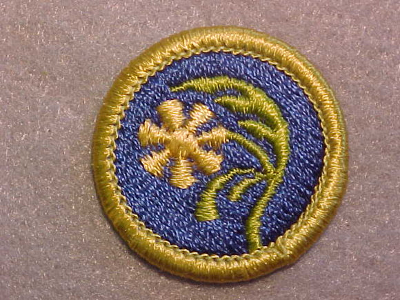 BOTANY, MERIT BADGE WITH CLEAR PLASTIC BACK, GREEN BORDER, NO IMPRINTS/LOGOS IN PLASTIC
