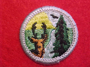 CONSERVATION OF NATURAL RESOURCES 1972-73, MERIT BADGE WITH PLASTIC BACK, SILVER BORDER, NO IMPRINTS/LOGOS IN PLASTIC