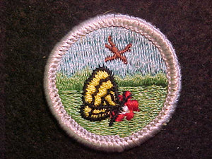 NATURE 1969-72, MERIT BADGE WITH CLOTH BACK, SILVER BORDER, ISSUED 1969 TO 1972