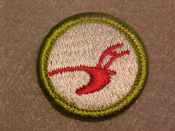 AGRICULTURE, MERIT BADGE WITH CLEAR PLASTIC BACK, GREEN BORDER, NO IMPRINTS/LOGOS IN PLASTIC