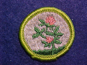 FORAGE CROPS, MERIT BADGE WITH CLOTH BACK, GREEN BORDER