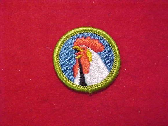 POULTRY KEEPING, MERIT BADGE WITH CLOTH BACK, GREEN BORDER, 1969-72