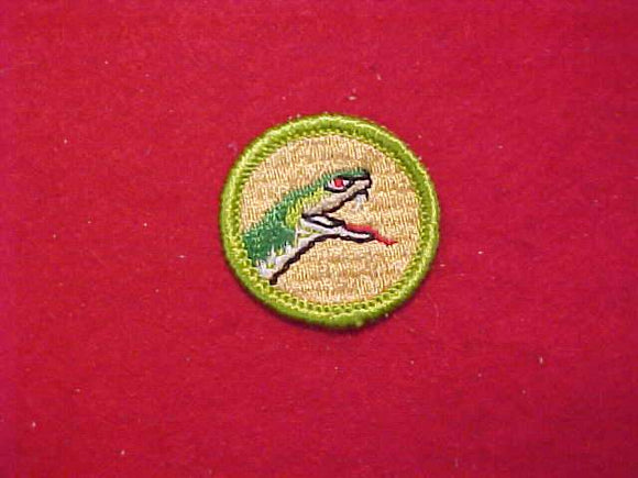 REPTILE STUDY, MERIT BADGE WITH CLOTH BACK, GREEN BORDER, 1969-72