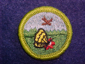 NATURE, MERIT BADGE WITH CLOTH BACK, GREEN BORDER