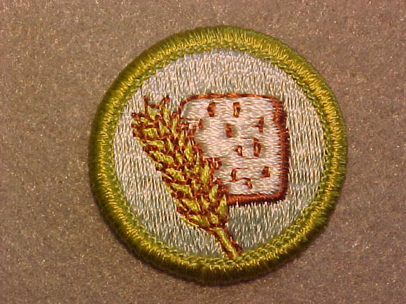 FOOD SYSTEMS, MERIT BADGE WITH CLEAR PLASTIC BACK, GREEN BORDER, NO IMPRINTS/LOGOS IN PLASTIC