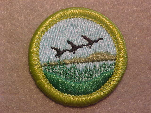 FISH & WILDLIFE MANAGEMENT 1972-, MERIT BADGE WITH CLEAR PLASTIC BACK, GREEN BORDER, NO IMPRINTS/LOGOS IN PLASTIC