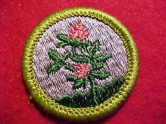 FORAGE CROPS, MERIT BADGE WITH CLEAR PLASTIC BACK, GREEN BORDER, NO IMPRINTS/LOGOS IN PLASTIC, 1972-75