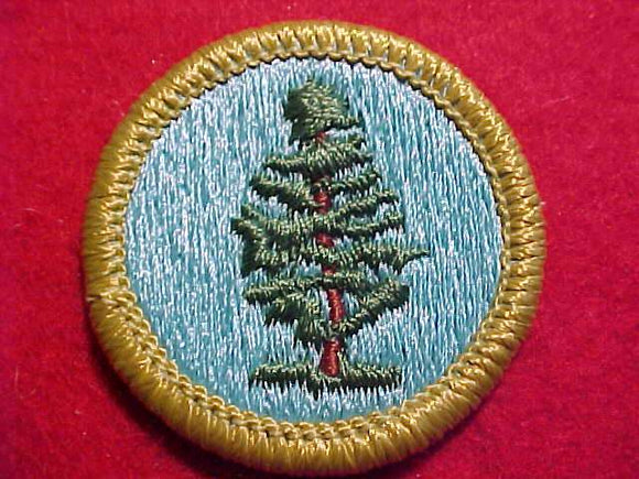 FORESTRY, MERIT BADGE WITH CLEAR PLASTIC BACK, GREEN BORDER, NO IMPRINTS/LOGOS IN PLASTIC, 1972-2002