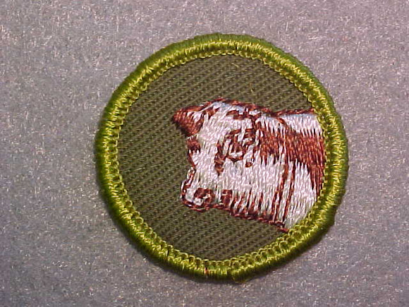 BEEF PRODUCTION, ROLLED EDGE TWILL BACKGROUND MERIT BADGE