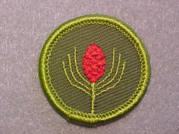 FORESTRY, ROLLED EDGE TWILL BACKGROUND MERIT BADGE