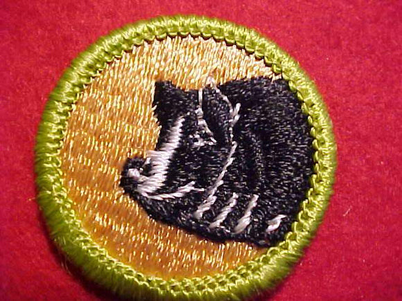 HOG PRODUCTION, MERIT BADGE WITH CLEAR PLASTIC BACK, GREEN BORDER, NO IMPRINTS/LOGOS IN PLASTIC, 1972-75