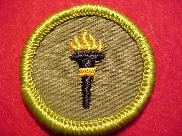 PUBLIC HEALTH, ROLLED EDGE TWILL BKGR. MERIT BADGE