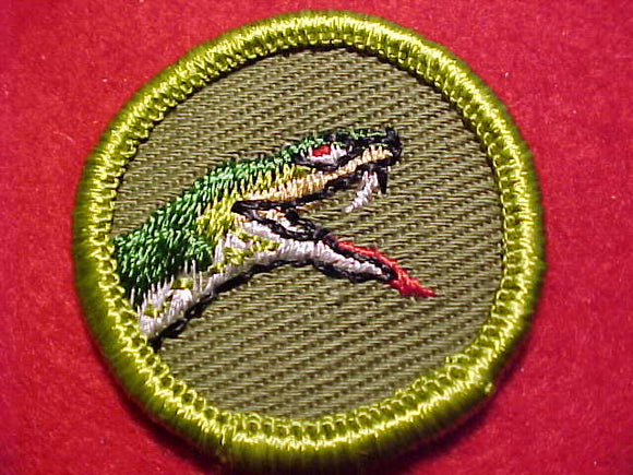 REPTILE STUDY, ROLLED EDGE TWILL BKGR. MERIT BADGE