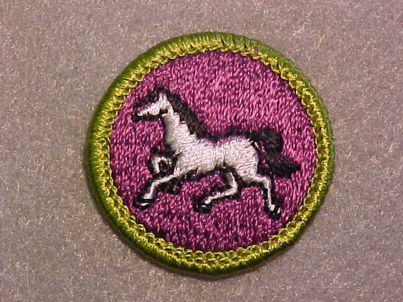 ANIMAL INDUSTRY, MERIT BADGE WITH CLEAR PLASTIC BACK, GREEN BORDER, NO IMPRINTS/LOGOS IN PLASTIC