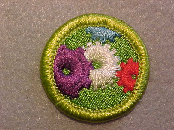 MACHINERY, MERIT BADGE WITH CLEAR PLASTIC BACK, GREEN BORDER, NO IMPRINTS/LOGOS IN PLASTIC
