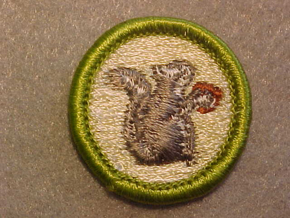 MAMMALS, MERIT BADGE WITH CLEAR PLASTIC BACK, GREEN BORDER, NO IMPRINTS/LOGOS IN PLASTIC