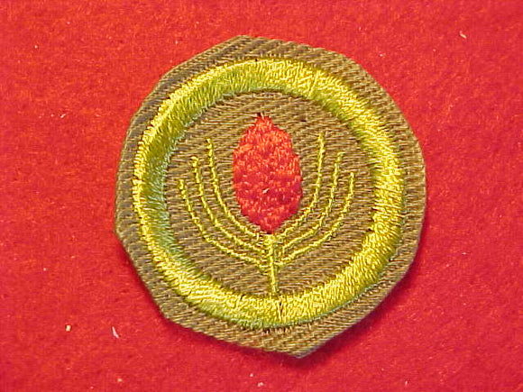 FORESTRY, MERIT BADGE WITH CRIMPED EDGE, KHAKI, ISSUED 1946-60