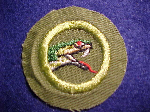 REPTILE STUDY MERIT BADGE, CRIMPED EDGE, KHAKI, ISSUED 1946-1960