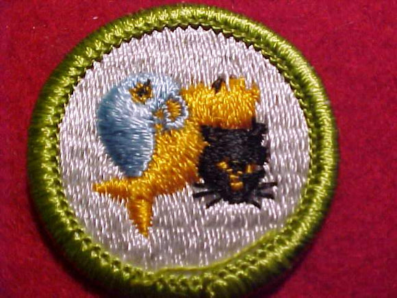 PETS, MERIT BADGE WITH CLEAR PLASTIC BACK, GREEN BORDER, NO IMPRINTS/LOGOS IN PLASTIC, 1972-2002