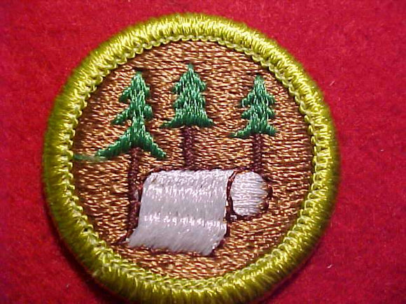 PULP AND PAPER, MERIT BADGE WITH CLEAR PLASTIC BACK, GREEN BORDER, NO IMPRINTS/LOGOS IN PLASTIC, 1972-2002