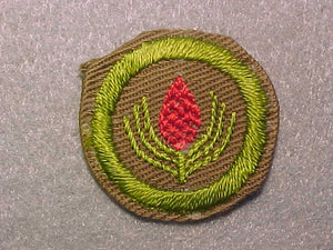 FORESTRY, MERIT BADGE WITH CRIMPED EDGE, TAN, ISSUED 1936-45
